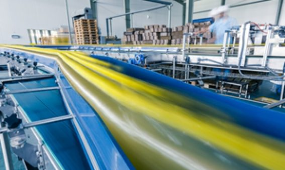 Conveyor belts can be made from a range of materials.