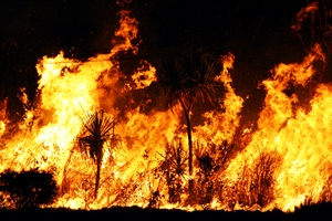 Buildings can be made safe from wildfires through intelligent design.